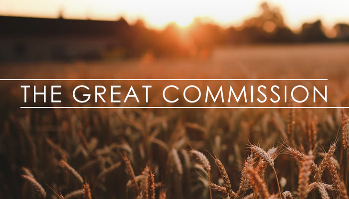 The Great Commission, disciple making movements